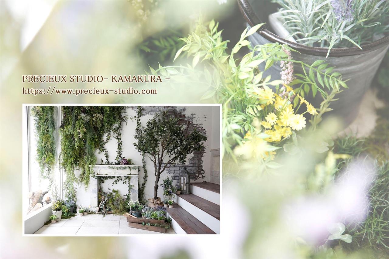 プレシュスタジオ鎌倉八幡宮前店の撮影セット内装 緑いっぱいのお部屋