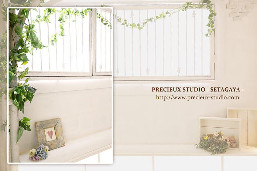 プレシュスタジオ世田谷本店の撮影セット内装 白い壁とアイビーの緑