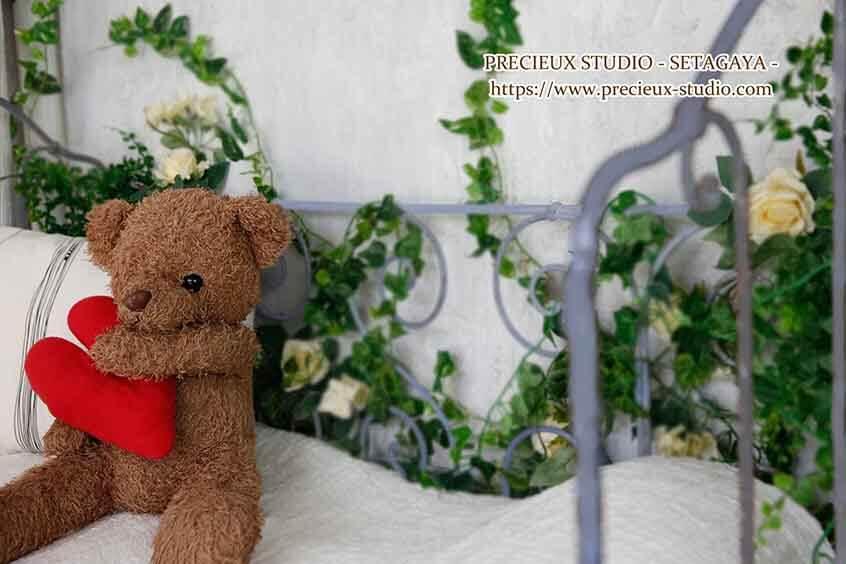 プレシュスタジオ世田谷本店の撮影セット内装 くまのぬいぐるみとアイビーグリーン