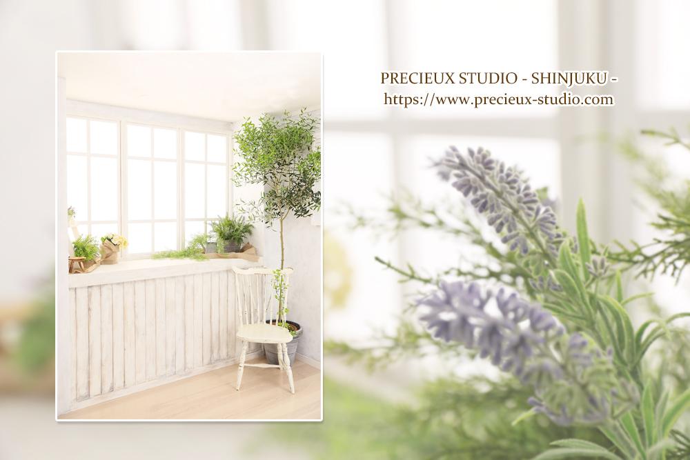 プレシュスタジオ新宿曙橋店の撮影セット内装 草花がきれいな明るいお部屋