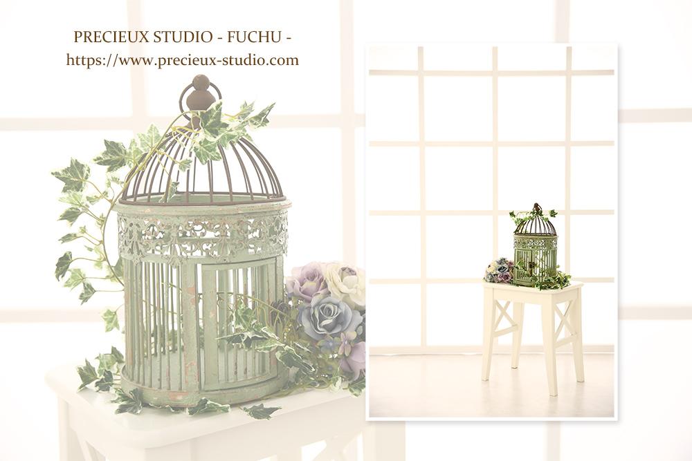 プレシュスタジオ府中店の撮影セット内装 明るい白いお部屋と鳥かごのインテリア