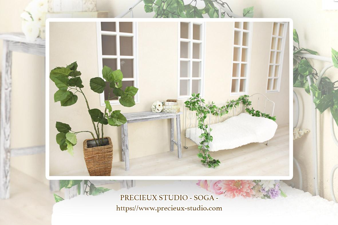 プレシュスタジオ蘇我店の撮影セット内装 シャビーシックな白いお部屋とグリーン