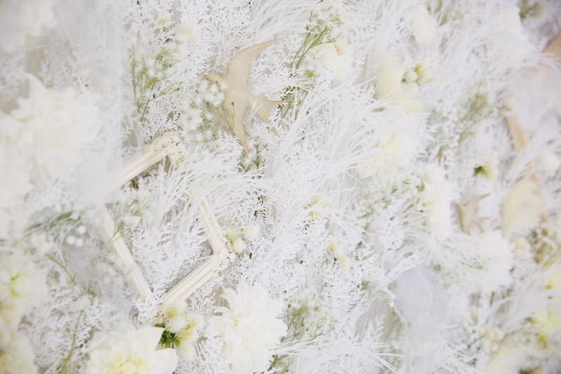 一面に白いお花を敷き詰めたスタジオセット こだわりのお花とアンティーク風のフレーム