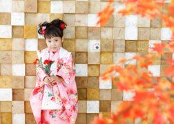 3歳七五三の記念写真 ミニーちゃんヘアスタイル